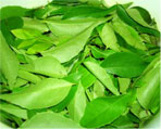 curry leaves natural herbs