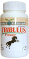 Tribulus Power-Male Support